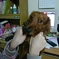 upload.new-upload-425697-BABY-1535245040.jpg