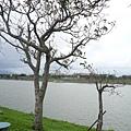 upload.new-upload-425697-z-P1000922.jpg