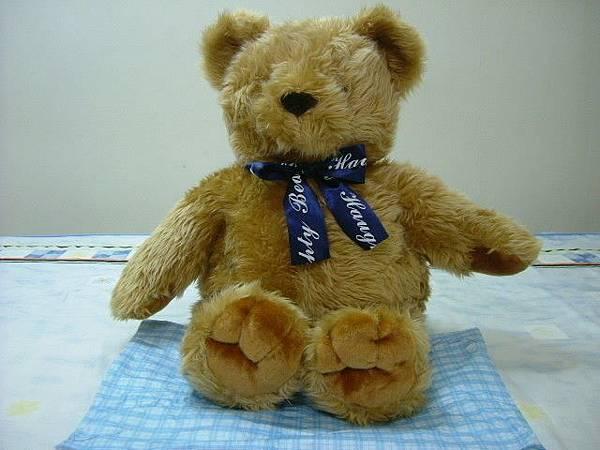 可愛大熊熊