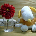 Snoopy&Flower