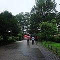 這天下大雨