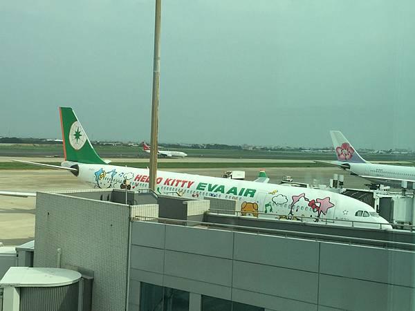 Kitty 班機來了