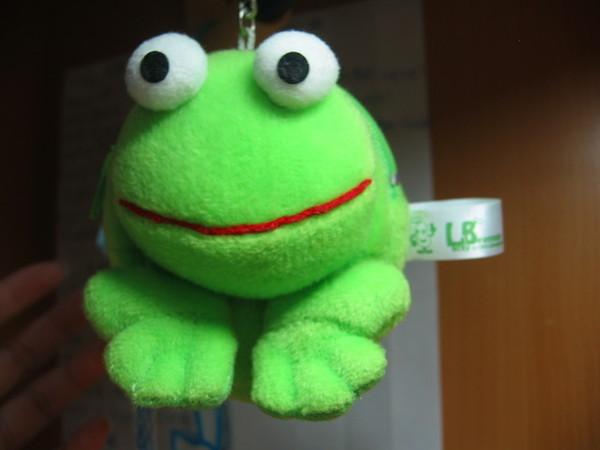 """"""" 呆呆青蛙包 """""""