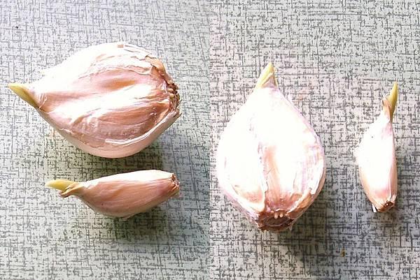 青蒜p蒜頭最大與最小合1