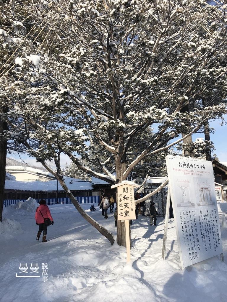 20170114北海道神宮IMG_7695-018