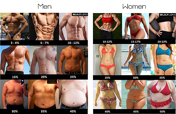 Body-Fat-Examples-Male-and-Female