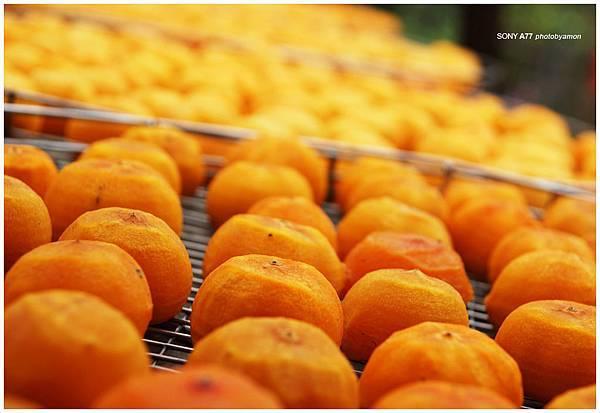 新埔柿餅 2