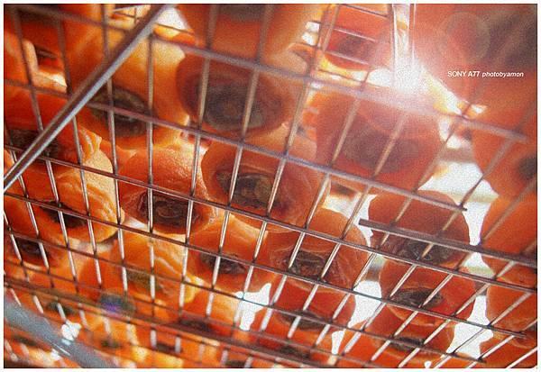 新埔柿餅 12