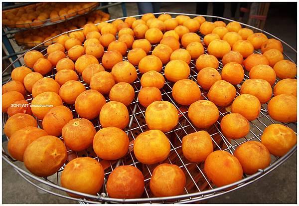 新埔柿餅 15
