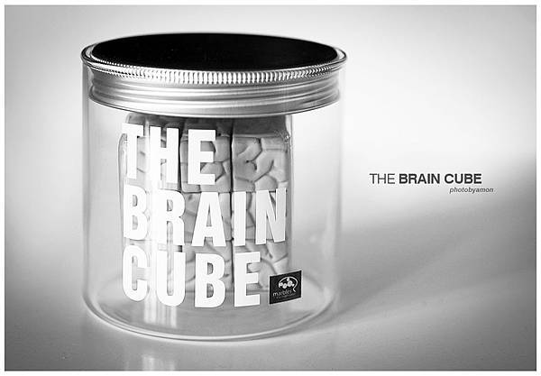 the brain cube 1
