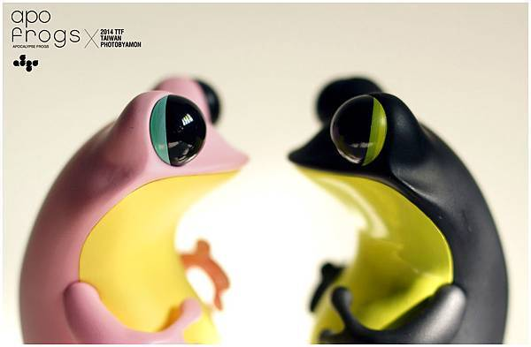 apo frogs 8