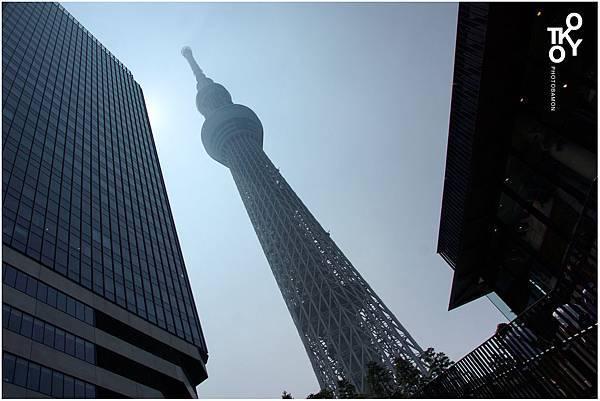 TOKYO 26