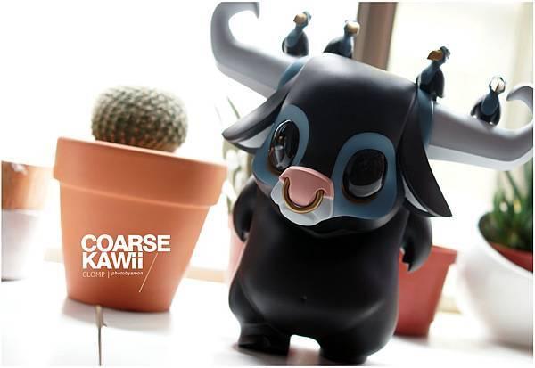 coarse KWAII 7