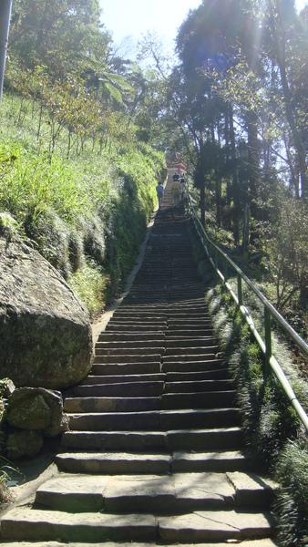 很陡的健行梯