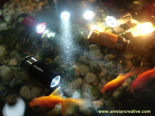 防水: 在水中與魚同游