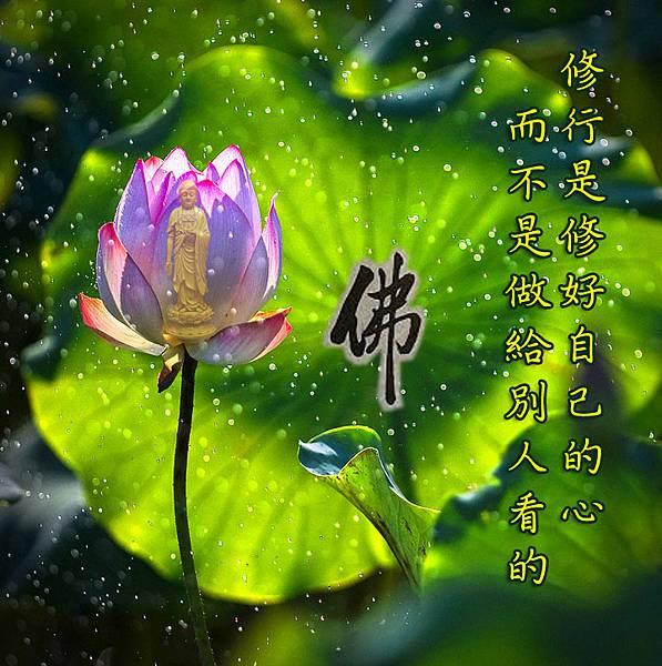 紅色蓮花-292201726-20190410-修行是修自己的心.jpg