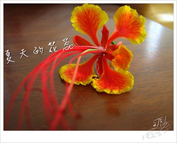 照片_0880-1.jpg