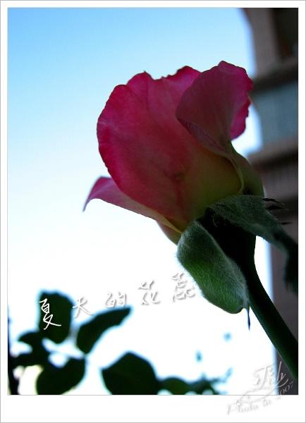 照片_0904-1.jpg