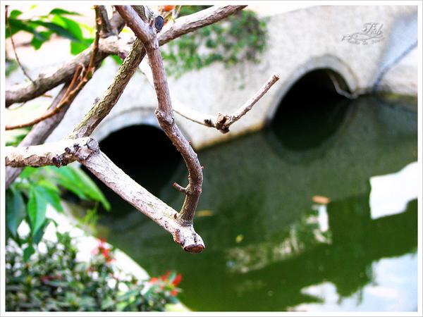 照片_0128-1.jpg