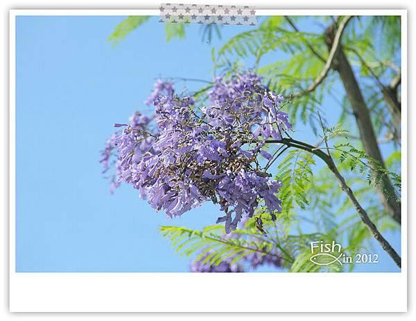 照片_0527-1