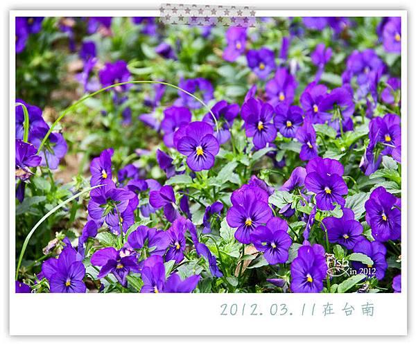 照片_0357-1