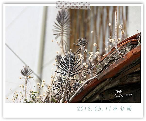 照片_0385-1