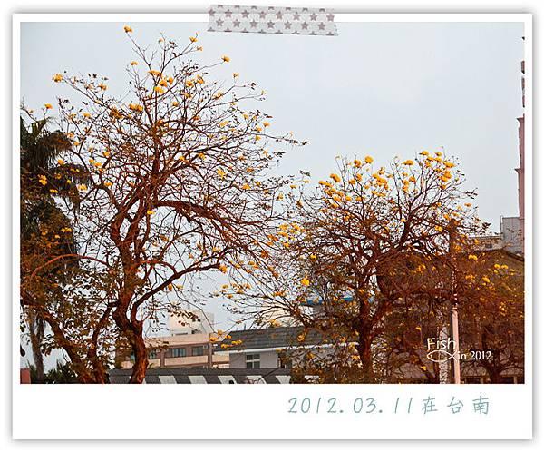 照片_0414-1