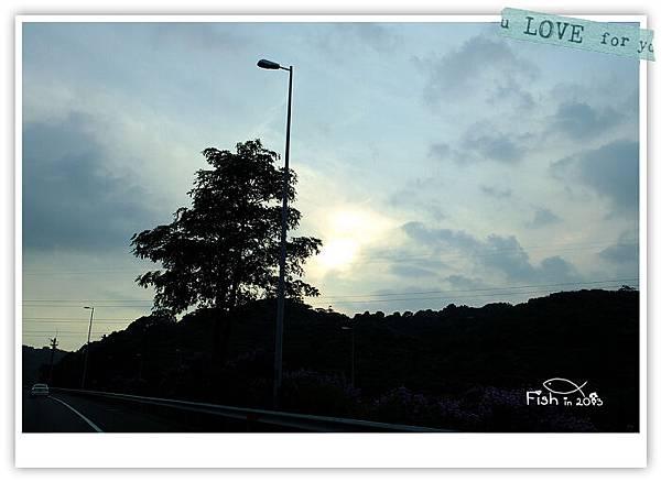 照片_0533-1.jpg