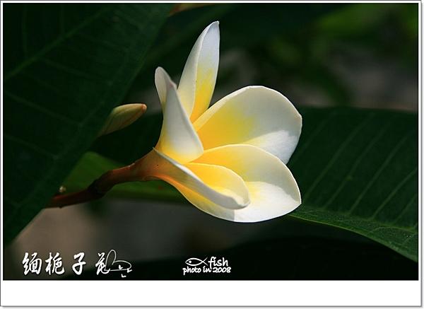 照片_0716-1.jpg