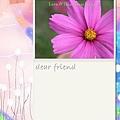 card_3.jpg
