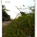 照片_1204-1.jpg