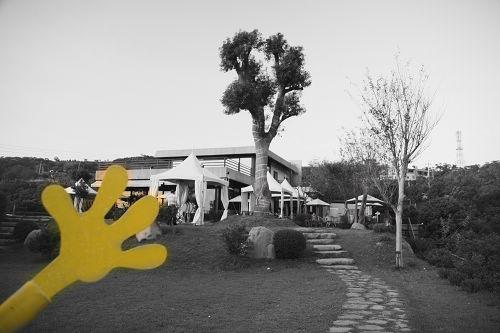 海綿寶寶的手~是黃色的~有發現ㄇ~