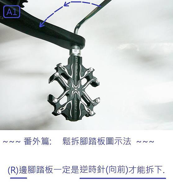 P1160832.1