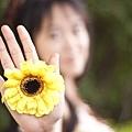 amy_yellow_110521_038.jpg
