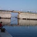 DSCF5625釣魚.JPG