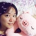 DSCF8754-3粉紅豬.jpg