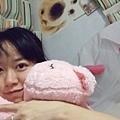 DSCF8763我愛小豬.JPG