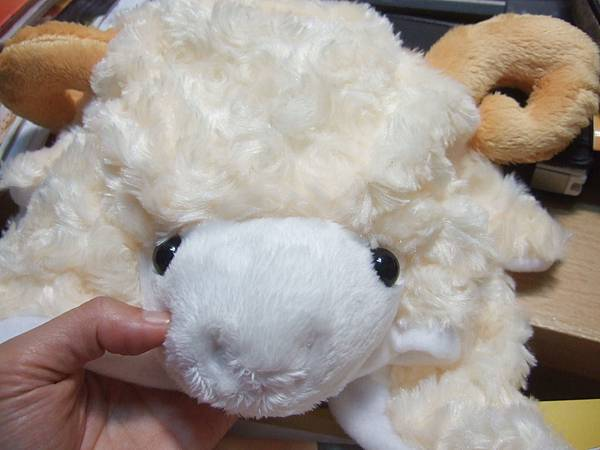 DSCF1831綿羊帽.JPG