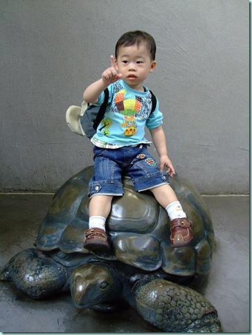 動物園 187