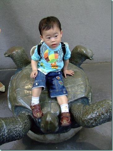 動物園 190