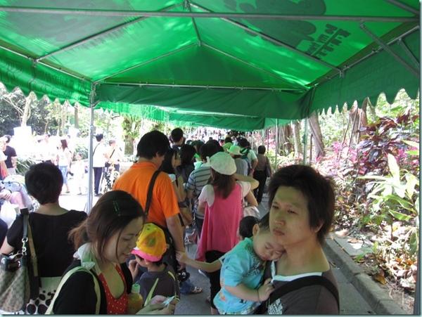 動物園 165
