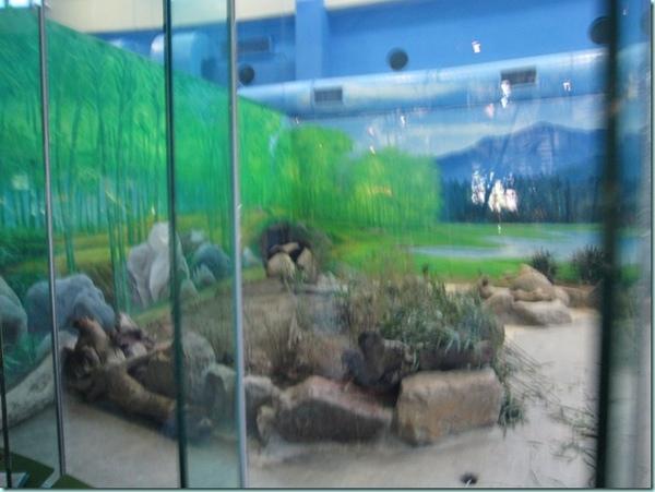 動物園 167