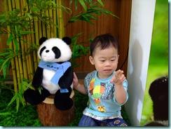 動物園 197