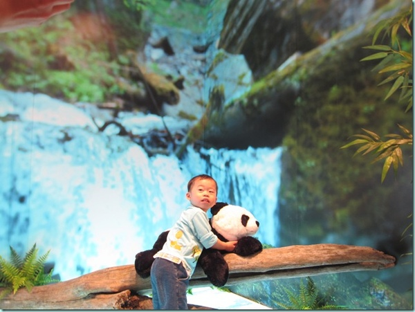 動物園 176