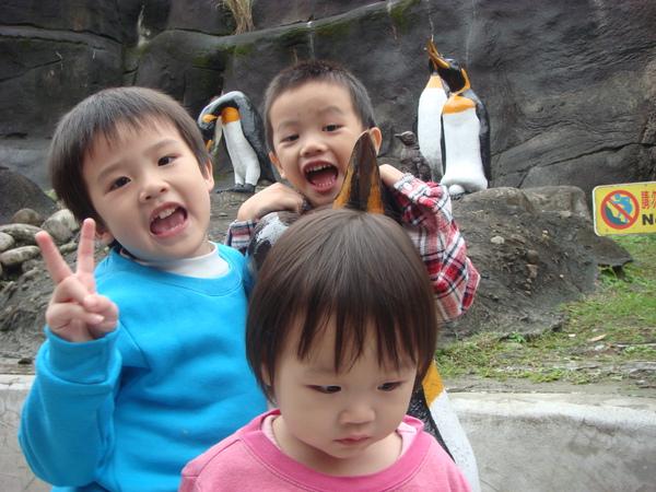 企鵝和寶貝