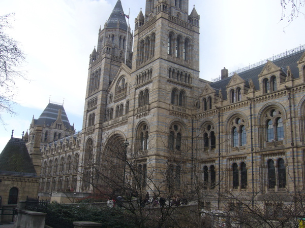 倫敦~自然史博物館-絕對讓你大開眼介,看看什麼叫做恐龍化時,什麼叫做把動物園搬到博物館裡-1.jpg