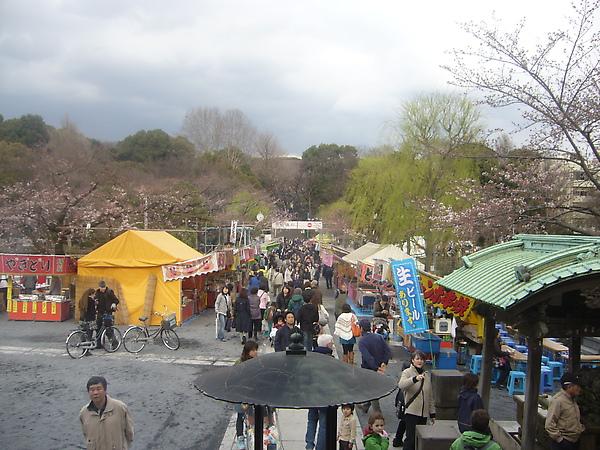 上野公園階梯下.JPG