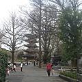 上野動物園-16.jpg