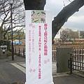 上野動物園-29.jpg