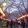 重回上野公園-1.JPG